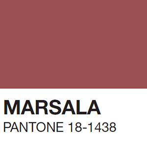 Latest Obsession // Pantone Color of the Year!